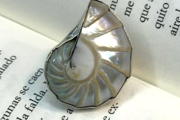 Anillo de Plata con Caracol Nautilus
